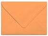 Carrot Envelope