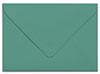 Scotch Pine Envelope