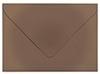 Shimmer Bronze Envelope