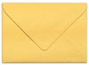 Shimmer Gold Envelope